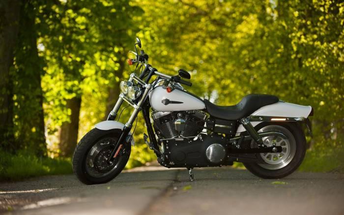 Мотоцикл, Harley Davidson, Харлей Дэвидсон