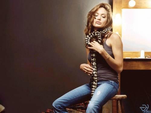Angelina Jolie, змея, Анжелиной Джоли, стул