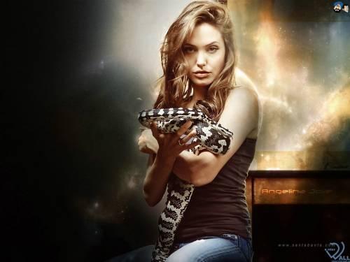 Обои с Анжелиной Джоли, Angelina Jolie,  взгляд