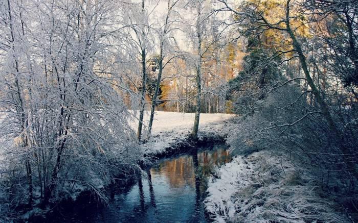 Зима, река, лес, деревья, пейзаж, природа, winter