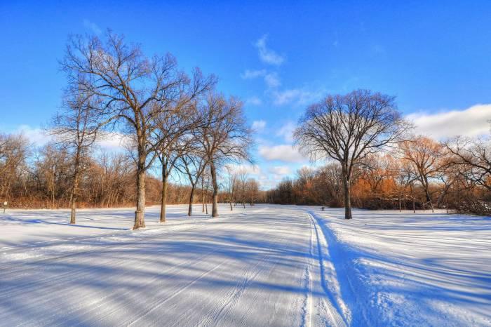 Зима, деревья, дорога, пейзаж, снег, winter, trees