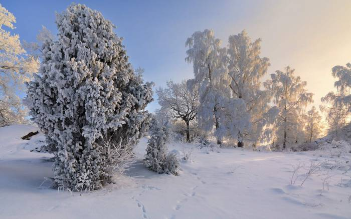 Vagnharad, Sodermanland, Sweden, Швеция, зима