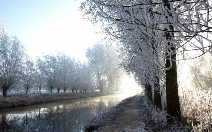 Зима, иней, река, деревья, природа, frost, winter