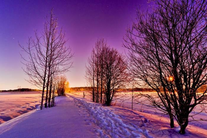 Зима, снег, деревья, природа, пейзаж, winter, snow