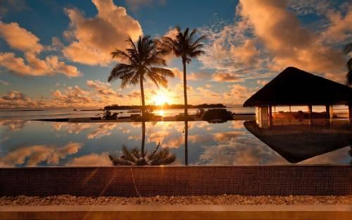 Тропик, море, пальмы