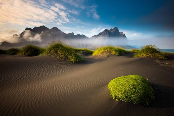 Песок, море, мох, Исландия, облака, пляж, Iceland