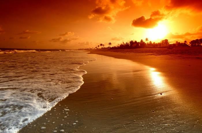 Пляж, море, небо, песок, sky, sea, palms, nature