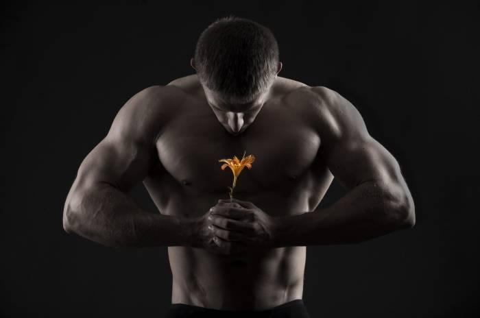 Парень, мускулы, мышцы, качок, цветок, мужчина