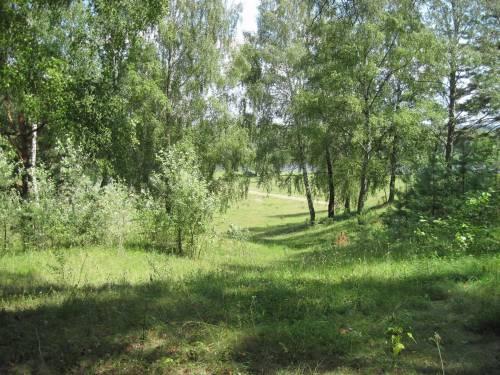 Мезин, село, природа, Мезинский заповедник