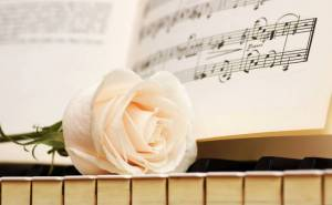 Роза белая клавиши ноты пианино rose