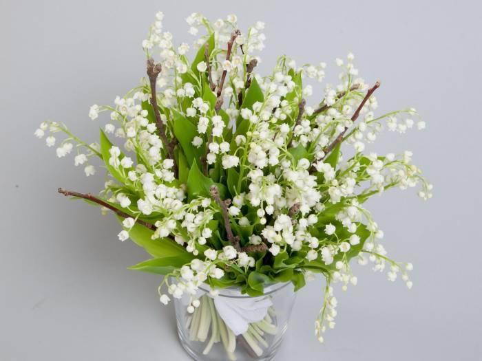 Цветок, весенние, цветы, ландыши, букет, flowers