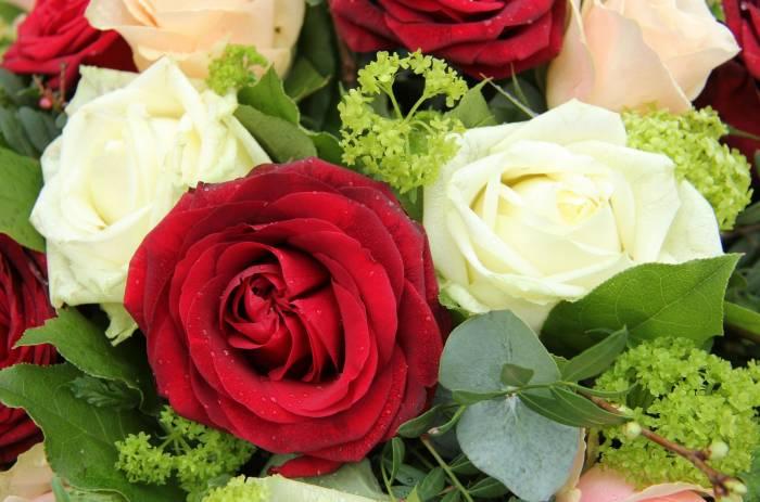 Розы, листья, букет, цветы, roses, leaves, flower