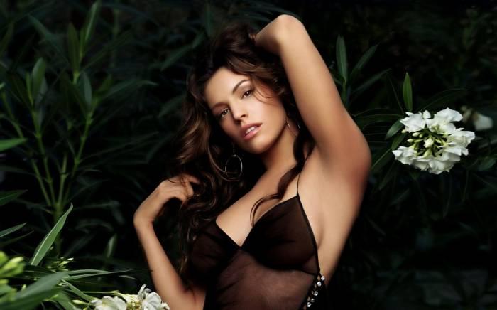 Kelly Brook, Келли Брук, брюнетка, актриса, секси